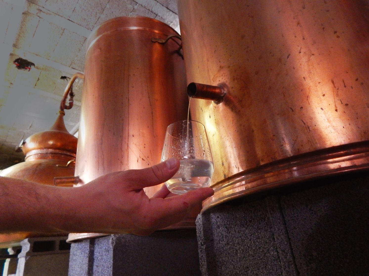 Distillation du whisky