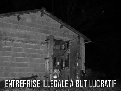 Entreprise illégale à but lucratif